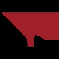 patriciami logo