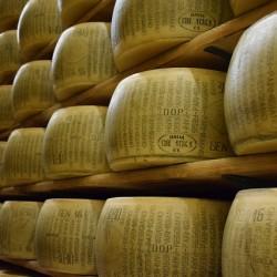 parmigiano-reggiano-1574185_640
